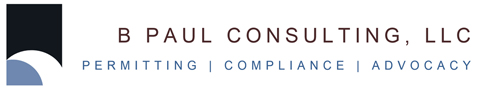 B Paul Consulting Logo - Small